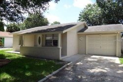 Photo of 10104 Royal Acres Court, TAMPA, FL 33615 (MLS # T3131240)