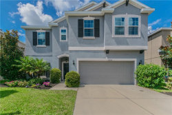 Photo of 12035 Whistling Wind Drive, RIVERVIEW, FL 33569 (MLS # T3131507)