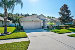 Photo of 3740 Ashton Oaks Boulevard, WESLEY CHAPEL, FL 33543 (MLS # T3131929)