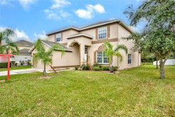 Photo of 7440 Canal Point Court, WESLEY CHAPEL, FL 33545 (MLS # T3133011)