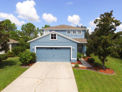 Photo of 10734 Navigation Drive, RIVERVIEW, FL 33579 (MLS # T3134414)
