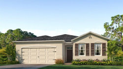 Photo of 31771 Tansy Bend, WESLEY CHAPEL, FL 33545 (MLS # T3136557)