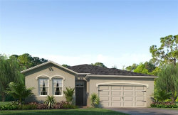 Photo of 31722 Tansy Bend, WESLEY CHAPEL, FL 33545 (MLS # T3136566)