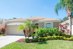 Photo of 1611 Cresson Ridge Lane, BRANDON, FL 33510 (MLS # T3136892)