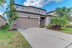 Photo of 11517 Blue Crane Street, RIVERVIEW, FL 33569 (MLS # T3137619)