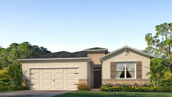 Photo of 12657 Eastpointe Drive, DADE CITY, FL 33525 (MLS # T3137932)