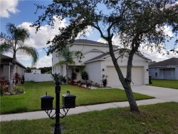 Photo of 7911 Carriage Pointe Drive, GIBSONTON, FL 33534 (MLS # T3138377)