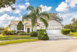 Photo of 3329 Silvermoon Dr, PLANT CITY, FL 33566 (MLS # T3140693)