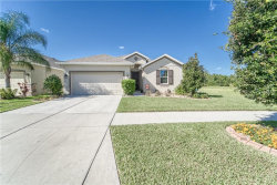 Photo of 12023 Whistling Wind Drive, RIVERVIEW, FL 33569 (MLS # T3140956)