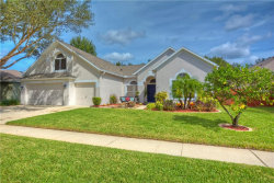 Photo of 4518 Compass Oaks Drive, Compass Oaks Drive, VALRICO, FL 33596 (MLS # T3141159)