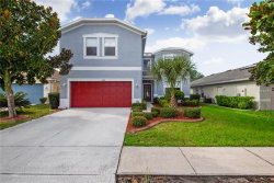 Photo of 11419 Mountain Bay Drive, RIVERVIEW, FL 33569 (MLS # T3141199)