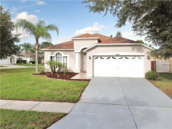 Photo of 18202 Holly Hills Way, TAMPA, FL 33647 (MLS # T3141674)