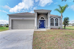 Photo of 24820 Panacea Court, LUTZ, FL 33559 (MLS # T3141779)