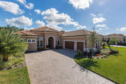 Photo of 1008 Stella Vara Drive, LUTZ, FL 33548 (MLS # T3141908)