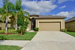 Photo of 11016 Whittney Chase Drive, RIVERVIEW, FL 33579 (MLS # T3142415)