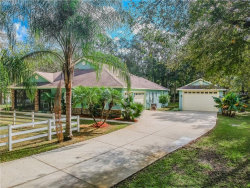 Photo of 9124 Shenandoah Run, WESLEY CHAPEL, FL 33544 (MLS # T3142550)
