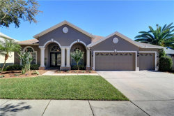Photo of 19340 Wind Dancer Street, LUTZ, FL 33558 (MLS # T3143041)