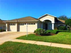 Photo of 11801 Washburn Place, TRINITY, FL 34655 (MLS # T3145382)