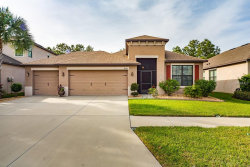 Photo of 8444 White Poplar Drive, RIVERVIEW, FL 33578 (MLS # T3146646)
