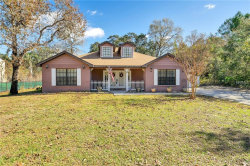 Photo of 11214 Kodiak Wren Road, WEEKI WACHEE, FL 34614 (MLS # T3146787)