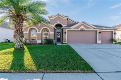 Photo of 4741 Everhart Drive, LAND O LAKES, FL 34639 (MLS # T3149821)