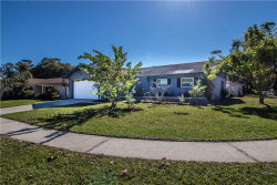 Photo of 135 Kendale Drive, SAFETY HARBOR, FL 34695 (MLS # T3149883)