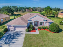 Photo of 13021 Thoroughbred Drive, DADE CITY, FL 33525 (MLS # T3150865)