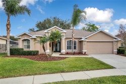 Photo of 22634 Willow Lakes Drive, LUTZ, FL 33549 (MLS # T3150867)