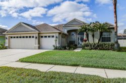 Photo of 1535 African Violet Court, TRINITY, FL 34655 (MLS # T3151136)