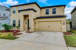 Photo of 11166 Spring Point Circle, RIVERVIEW, FL 33579 (MLS # T3151149)