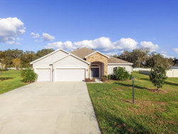 Photo of 3324 Ranchdale Drive, PLANT CITY, FL 33566 (MLS # T3151211)
