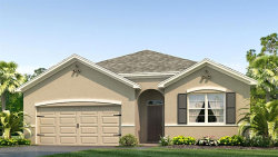Photo of 2592 Storybrook Preserve Drive, ODESSA, FL 33556 (MLS # T3151338)