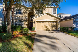 Photo of 5908 Tulip Flower Drive, RIVERVIEW, FL 33578 (MLS # T3151460)