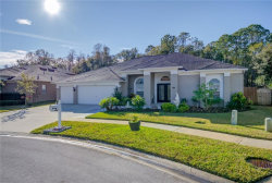 Photo of 5038 Silver Charm Terrace, WESLEY CHAPEL, FL 33544 (MLS # T3151796)