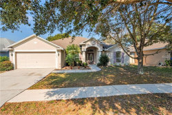 Photo of 606 Nutshell Court, SEFFNER, FL 33584 (MLS # T3151932)