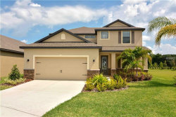 Photo of 12206 Ballentrae Forest Drive, RIVERVIEW, FL 33579 (MLS # T3152092)