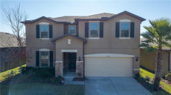 Photo of 9209 European Olive Way, RIVERVIEW, FL 33578 (MLS # T3152265)