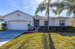 Photo of 9246 Rolling Cir, SAN ANTONIO, FL 33576 (MLS # T3152593)