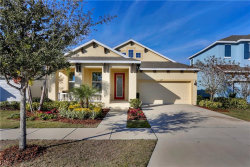 Photo of 5229 Admiral Pointe Drive, APOLLO BEACH, FL 33572 (MLS # T3152704)