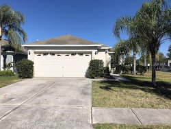 Photo of 7223 Royal George Court, WESLEY CHAPEL, FL 33545 (MLS # T3155574)