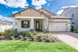 Photo of 12334 Lake Blanche Drive, ODESSA, FL 33556 (MLS # T3157259)
