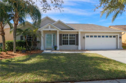 Photo of 5416 New Savannah Circle, WESLEY CHAPEL, FL 33545 (MLS # T3157345)