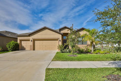 Photo of 13901 Felix Will Road, RIVERVIEW, FL 33579 (MLS # T3157550)