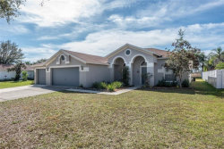 Photo of 10323 Tarragon Drive, RIVERVIEW, FL 33569 (MLS # T3157574)