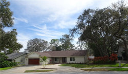 Photo of 1049 Eniswood Parkway, PALM HARBOR, FL 34683 (MLS # T3157576)