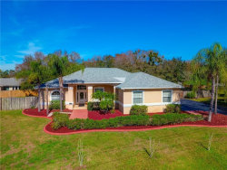 Photo of 11902 Shadow Run Boulevard, RIVERVIEW, FL 33569 (MLS # T3157680)
