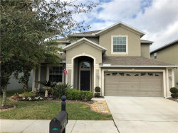 Photo of 20434 Carolina Cherry Court, TAMPA, FL 33647 (MLS # T3157891)