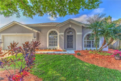 Photo of 517 Tuscanny Street, BRANDON, FL 33511 (MLS # T3157990)