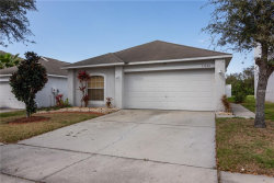 Photo of 13509 Padron Court, RIVERVIEW, FL 33579 (MLS # T3158047)
