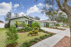 Photo of 14013 Fareham Road, ODESSA, FL 33556 (MLS # T3158056)